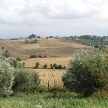 toscane20